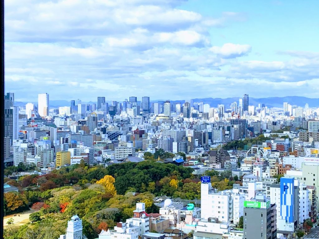 あべのハルカスから眺める大阪の風景