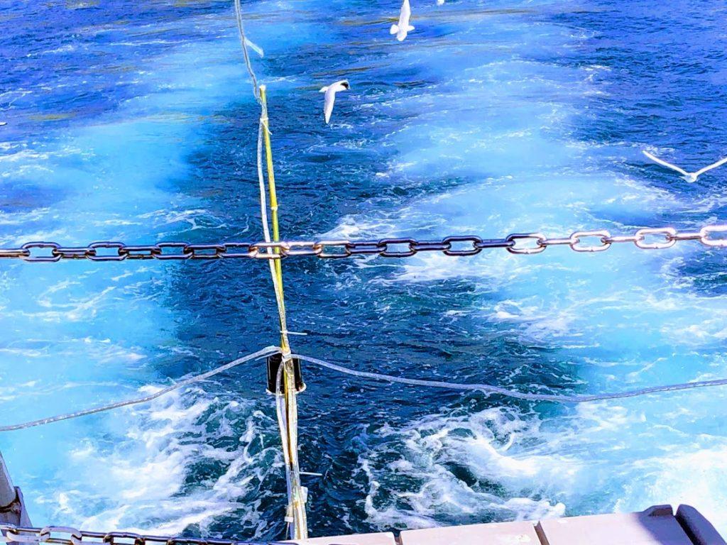 駿河湾クルーズの海